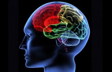 تکنیک هایی جهت تقویت حافظه!