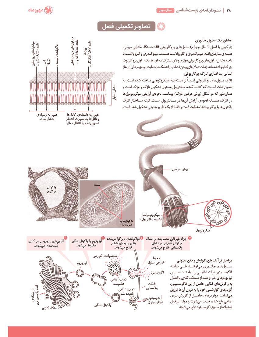 نمودارنامهی زیست شناسی و آزمایشگاه 1